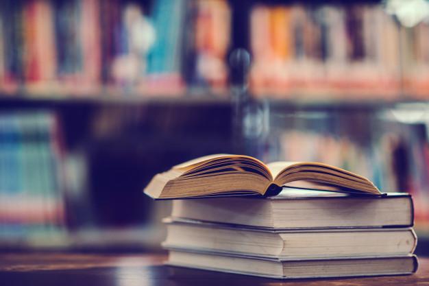 Percursos e trajetórias dos doutorandos do Instituto de Ciências Sociais da Universidade do Minho