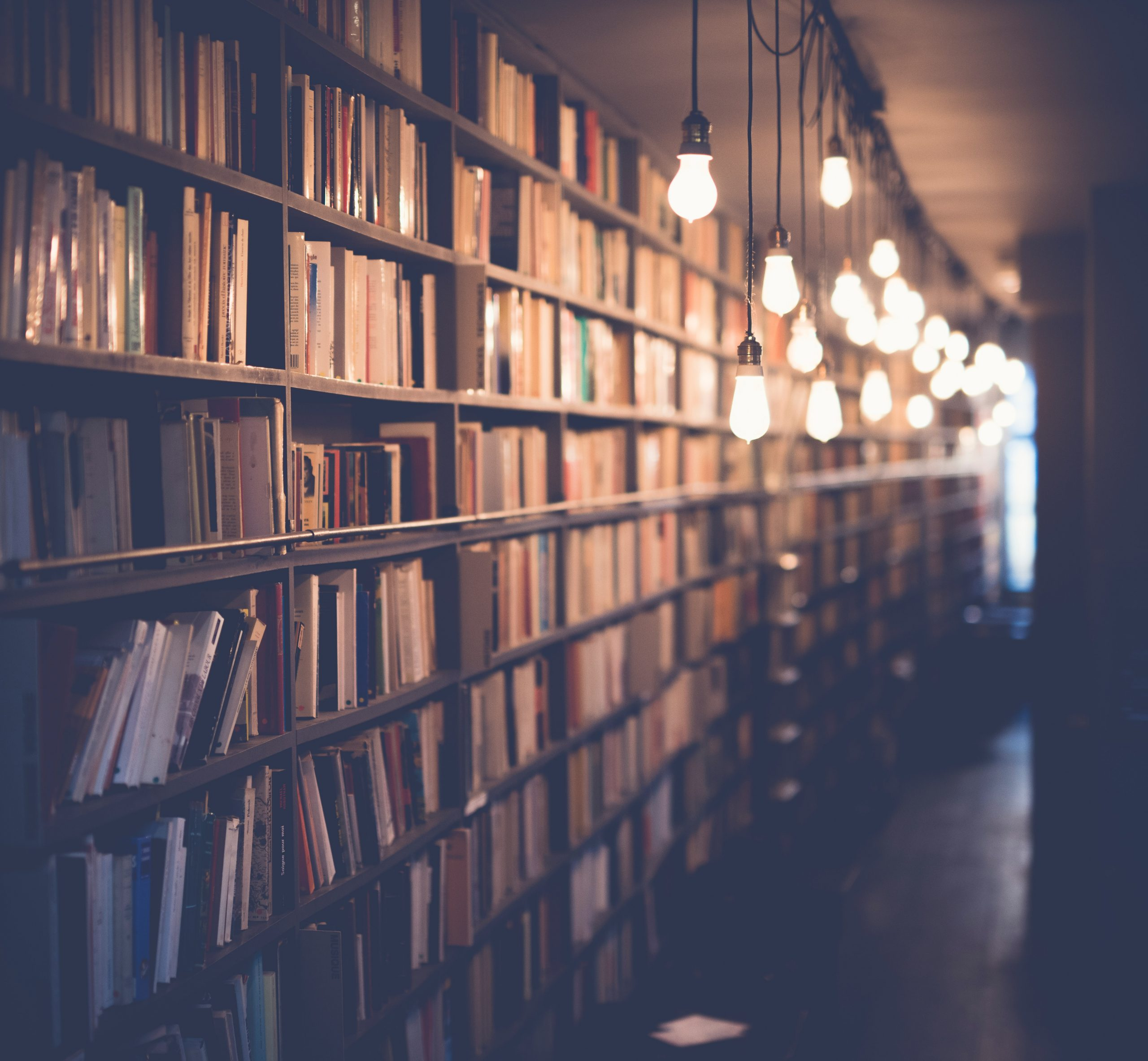 Plano de Desconfinamento permite reabertura de bibliotecas, livrarias e arquivos em Portugal