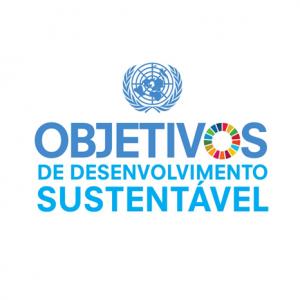 """""""Cultura e Desenvolvimento: Projetos Culturais e a Agenda 2030"""" tem novo desafio no Brasil"""