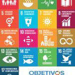 PolObs assinala 6º aniversário da Agenda 2030 com propostas para a Década da Ação
